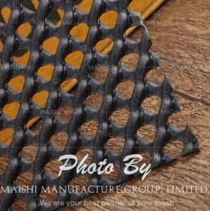 Plastic Mesh for Pipeline Protection pictures & photos