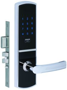 Touch Screen Password Home Lock Keypad Code Swipe Card Lock pictures & photos