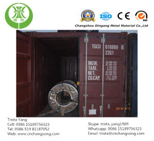 Galvanized Steel Plate with Normal Spangle (CS0002) pictures & photos