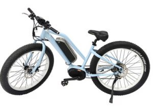 Chinese Cheap MID-Motor E-Bike Stable Performance for Sale Electric Bicycle pictures & photos