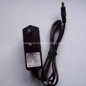Smart Charger 12.6V 12V 0.6A for 11.1V Li-ion Battery pictures & photos