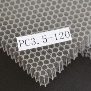 PC Honeycomb Sheet (PC8) pictures & photos
