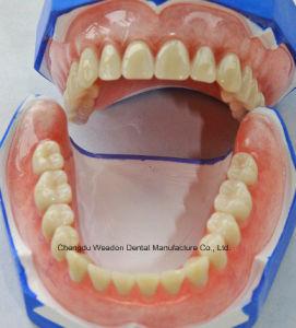 Full/Partial Denture pictures & photos