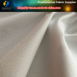 Striped Nylon Taffeta Crinkle Fabric, Nylon Textured Yarn Dobby Striped Fabric pictures & photos