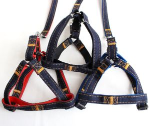 PP Material Pet Dog Traction Leashes pictures & photos