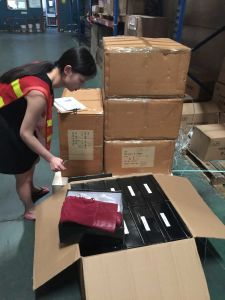 Air Freight From Guangzhou/HK to Fos Malmo pictures & photos