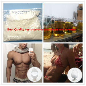 Test Enanthate Raw Steroid Powders Testosterone Enanthate 315-37-7 Test Enan Test E pictures & photos
