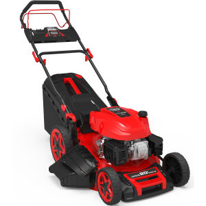 173cc Professional Electric Start Self-Propelled Lawn Mower pictures & photos