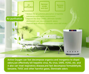Ozone Disinfector Ozone Generator Purifier Gl-3190 pictures & photos