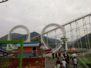 Heatbeating Roller Coaster Hot Outdoor Amusement Park Rides pictures & photos