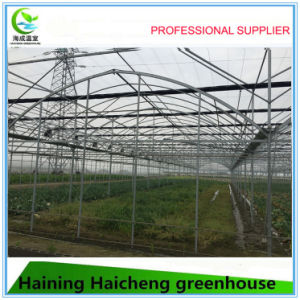 High Quality Plastic Film Greenhouse for Plants pictures & photos