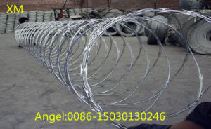 Hot Sale Concertina Razor Barbed Tape Wire (BTO-22) pictures & photos