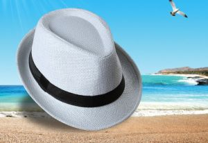 China Supplier Manufacture Travell Well Man Fedora Hat pictures & photos