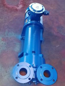 2BV6 131 Liquid Ring Vacuum Pump pictures & photos