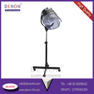 New design Hair Drying for Hair Equipment (DN. H9709) pictures & photos