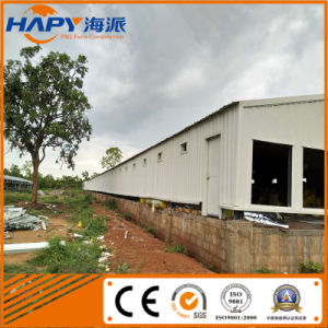Full Set Automatic Poultry Equipment for Poultry Farm pictures & photos