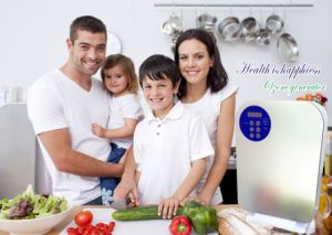 Domestic Corona Ozone Generator for Cleaning Vegetables Portable pictures & photos