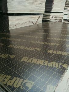 Indonesia Waterproof Phenolic Film Faced Plywood with Brand Name pictures & photos