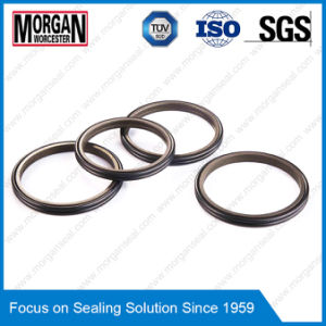 Pti Type Hydraulic Cylinder Rod Dust Double Wiper Seal Ring pictures & photos