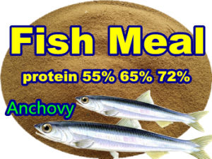 Fish Meal for Fish Feed with Lowest Price pictures & photos