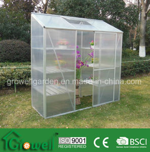 Medium Hobby Greenhouse (ME627-3) pictures & photos