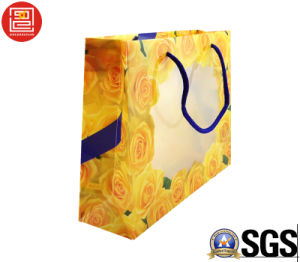 Professional Custom Plastic PVC/Pet Shopping Bag, Plastic Carrier Bag/Gift Bag with Logo Printing