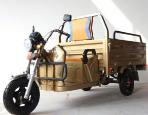 Adult Electric Three Wheel Motorcycle pictures & photos