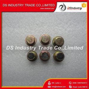 Cummins Isbe Diesel Engine Universal Threaded Plug 3924147 pictures & photos