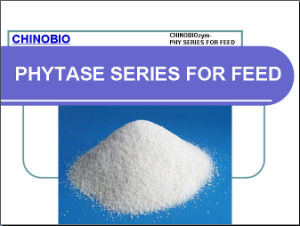 Phytase of Enzyme for Feed