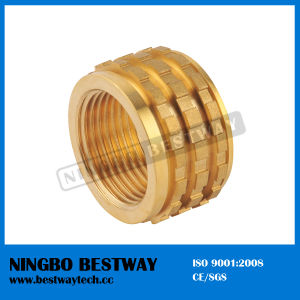 Brass PPR Insert for Sale (BW-728) pictures & photos