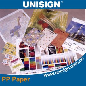 Matte PP Synthetic Paper for Indoor Printing pictures & photos