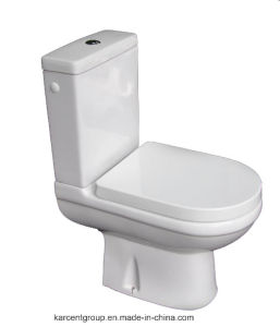 Two Piece Ceramic Toilet Washdown Toilet Water Closet Wc 10130