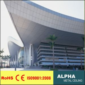 Aluminum Exterior Customized Laser Cutting Facades and Curtain Wall pictures & photos