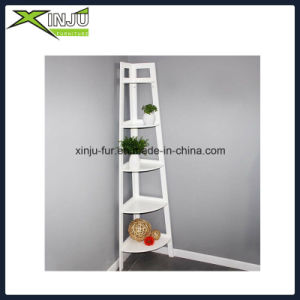 5 Tier Wooden Corner Rack with Nc Painting