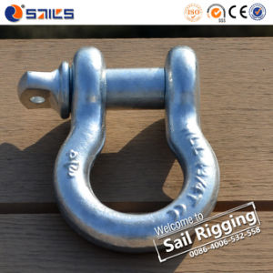 G209 Zin-Plated Us Forged Bow Shackle pictures & photos