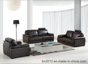 Living Room Genuine Leather Sofa (SBO-3016) pictures & photos