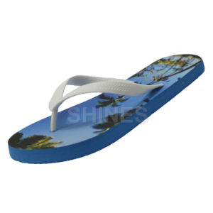 Palm Tree Flipflop for Mens pictures & photos
