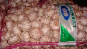 Export Good Quality Fresh Chinese Mesh Bag Packing Pure White Garlic pictures & photos