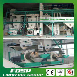 Peanut Shell Pellet Making Line Biomass Granulator Project for Boiler Fuel pictures & photos