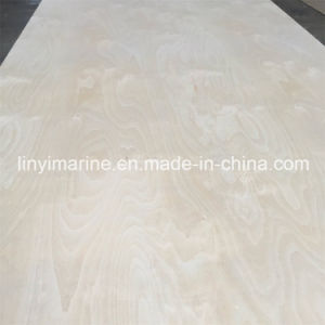 White Birch Plywood, Furniture Birch Plywood 1220*2440*18mm pictures & photos