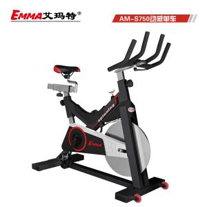 Commercial Spin Bike Fitness Bike Am-S750 pictures & photos