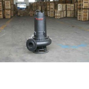 Double Channel Impeller Submersible Sewage Pump pictures & photos