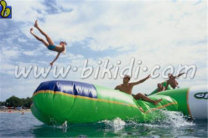 2015 Latest Popular Exciting Game Durable Inflatable Water Blob, Water Catapult for Sale D3043 pictures & photos