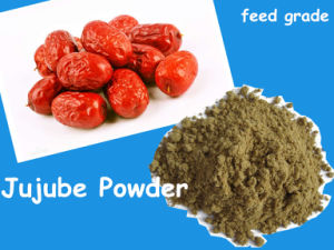 Jujube Powder for Feed with Low Price pictures & photos