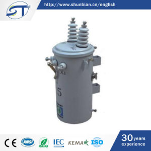 13.2kv Single Phase Oil Immersed Distribution Transformer pictures & photos