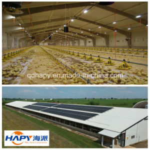 Hot Sale Light Steel Structure Prefabricated House for Chicken Farming pictures & photos