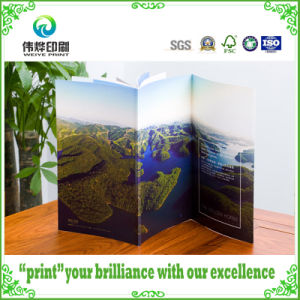 Saddle Stitch Art Paper Offset Printing Brochures/Leaflet pictures & photos