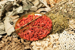 Goji Berries pictures & photos