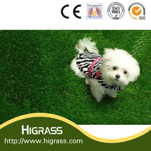 35mm UV Resistant Artificial Turf for Animal pictures & photos