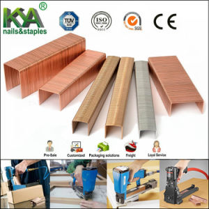 35 Series Copper Carton Closing Staples for Packaging pictures & photos
